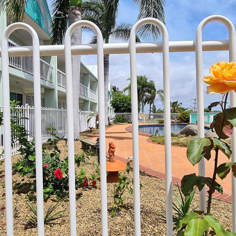 View of pool through fencing with orange rose in foreground